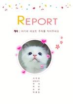 [슈가냥A+]고양이레포트표지[<strong>이쁜</strong>레포트표지][리포트표지]
