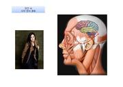 시각 정보의 뇌 인식 미치 저장 경로를 <strong>ppt</strong> <strong>애니메이션</strong>으로 쉽게 설명하는 발표자료