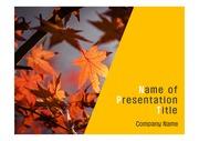 PPT양식 템플릿 배경 - 가을의 아름다움1