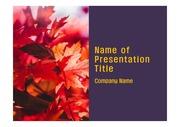 PPT양식 템플릿 배경 - 캐나다, 단풍잎2