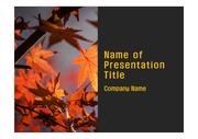 PPT양식 템플릿 배경 - 가을,단풍잎
