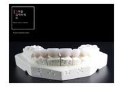 PPT양식/서식/템플릿(치과,치기공,치의학,치대,치위생,임플란트,건치,치아관리)