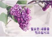 연보라, 라일락, 향기, 명상, 꽃, 아름다움, 보라색, 우아함, 휴식, 힐링, 감정, 치유, 회복, PPT