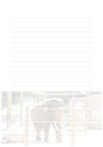 속지, 편지지, 노트, 연습장 ver5