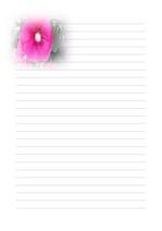 편지지, 노트, 연습장, 속지 v11