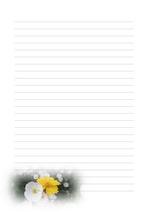 편지지, 노트, 연습장, 속지 v20