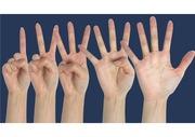 손가락/손모양 고해상도 사람손 숫자 누끼 이미지