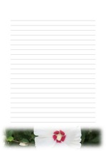 편지지, 노트, 연습장, 속지 18090318