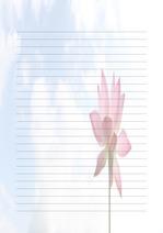 편지지, 노트, 연습장, 속지 v1809131