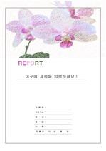 레포트 표지 & 보고서 표지 v1