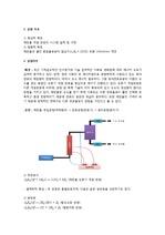 화공시스템실험 에탄올 개질 결과레포트
