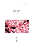 색채심리학-분홍색