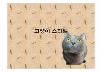 맹수, 고양이, 사자 ppt