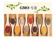 GMO 유전자 변형식품 ppt GMO의 역사, 형성과정, 현황 미래 ppt