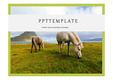 자연PPT 깨끗한 자연환경 자연풍경 환경 자연배경 깔끔한 배경 PPT템플릿 7