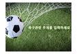 축구 배경 PPT 양식7