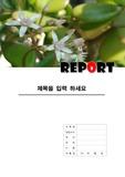 꽃 레포트 표지 2