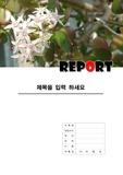 꽃 레포트 표지 3