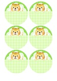 강아지 이름표