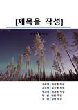 레포트 표지[오로라,우주,자연현상,자기장,초자연]