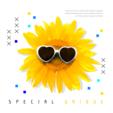 여름 컨셉 유니크 팝업 01