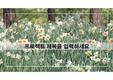 봄꽃 ppt 템플릿 v1808167