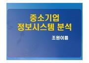 [시스템분석] 중소기업 정보시스템 분석 결과
