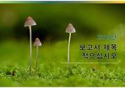 20191118G, 레포트, 템플릿, 일지, 발표, 생태계, 자연, 과제, 발표, 과학, 연구, PPTX, 가을, 산, 돈, 곰팡이, 버섯, 균, 식용, 야생, 감성, 상담