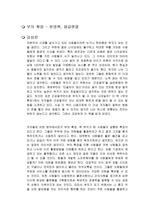 부의 확장 독후감 천영록, 제갈현열