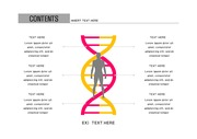 ppt다이어그램 - 2433(그래픽 타입, 의학, DNA, 인체, 남녀, 서술형, 컬러2)