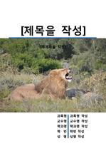 레포트 표지[사자,Lion,동물,야생,생물,환경,자연]