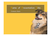 PPT양식 템플릿 배경 - 반려동물, 반려동물 산업1