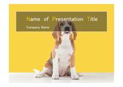 PPT양식 템플릿 배경 - 반려동물, 반려동물 산업2