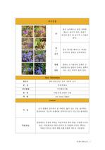 야생초화류도감(35종)-사진,형태,특징,용도,기본성상-한글